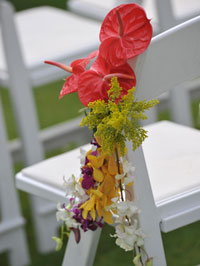 Arrangement on wedding aisle chairs. Photography by Cassi Pali of Creative Island Visions
