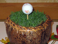 Specialty centerpiece with real grass and gold ball