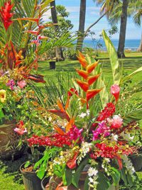 Tropical flowers and greenery in outdoor Maui setting