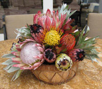 Maui protea bouquet tropical flower arrangement