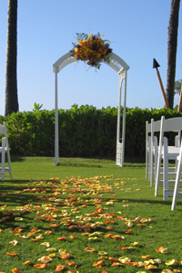Wedding Arches & Aisles